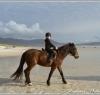 beach_riding004