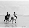 beach_riding005