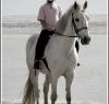beach_riding011