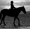 beach_riding015