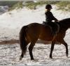 beach_riding016