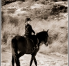beach_riding017