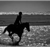 beach_riding019