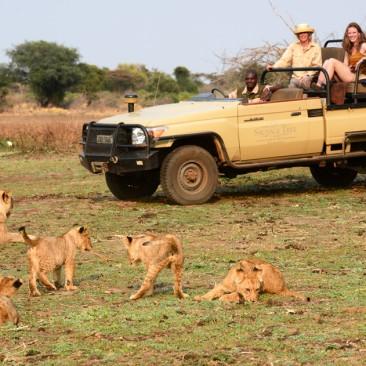 Photo Safari Clinics