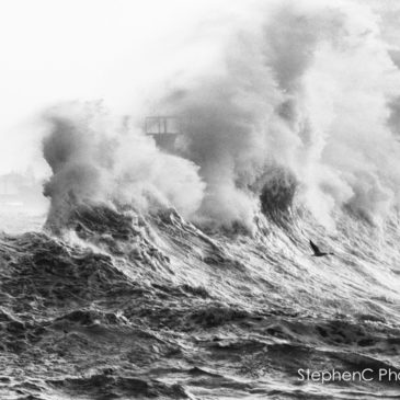Boom – Kalk Bay Harbour takes a pounding