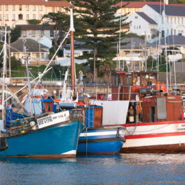 Kalk Bay Photowalk with Airbnb Experiences